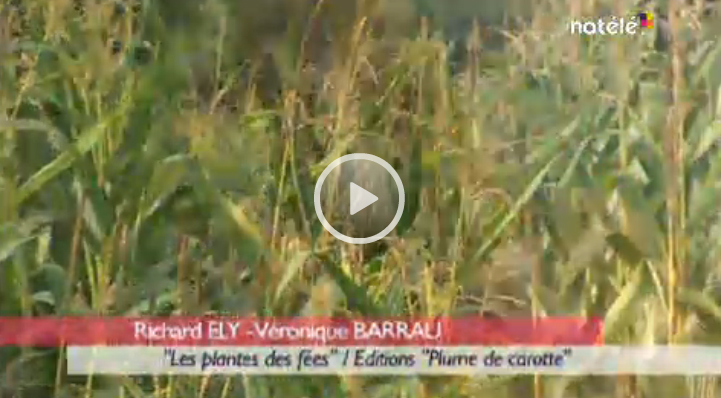 reportage-plantes-fees-richardely1